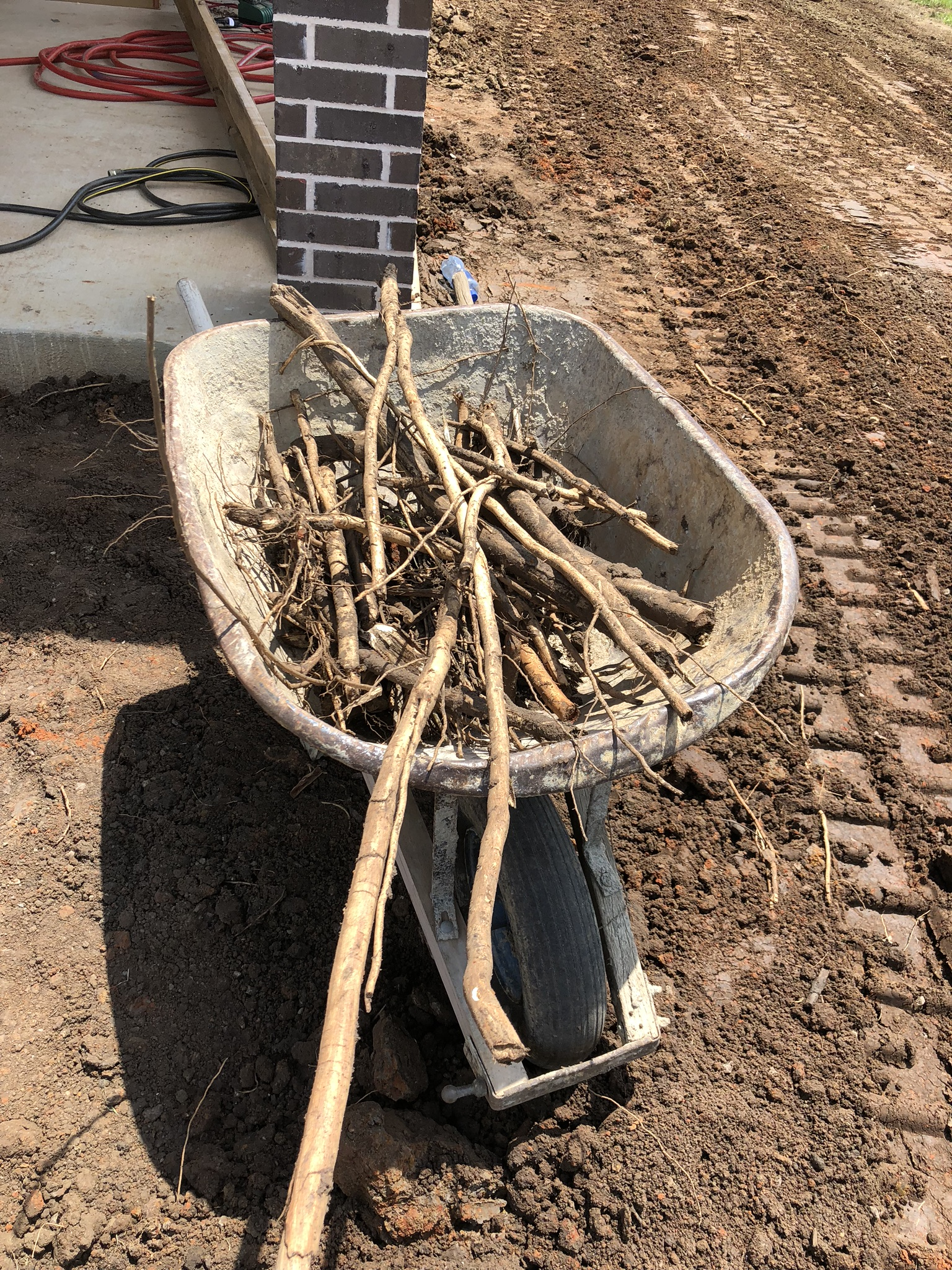 Not all soil is created equal. In the case of the Tioga Job, we ran into some tree roots we weren't expecting. Believe us, we've seen worse. Our crews politely gathered this wood for us for this nice snap shot of what lingers beneath the soil of your home.